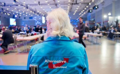 En Allemagne, l'extrême droite courtise les salariés de l'automobile
