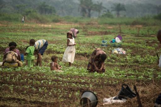 Crises au Congo: le bilan sévère et les propositions des évêques