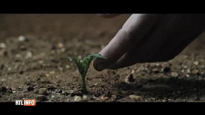 Cultiver des légumes dans l'espace, bientôt une réalité? La NASA y travaille avec des étudiants américains