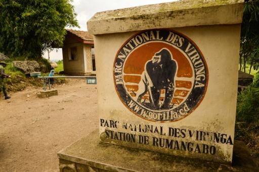 Libération des deux Britanniques enlevés vendredi en RDCongo