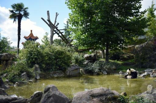 Cambriolage au zoo de Beauval: entre 150.000 et 200.000 euros dérobés