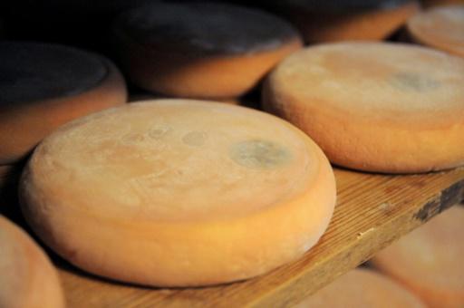 E Coli: rappel de l'ensemble des reblochons produits par la fromagerie Chabert