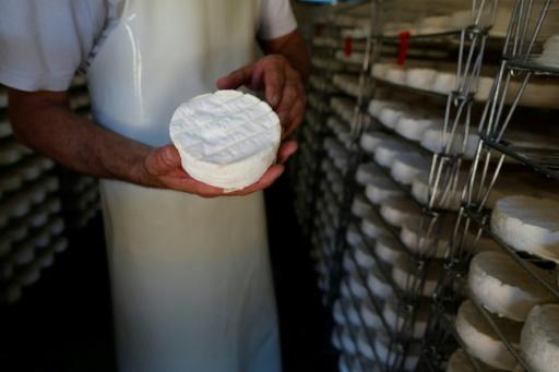 Cri d'alarme de chefs pour le camembert au lait cru