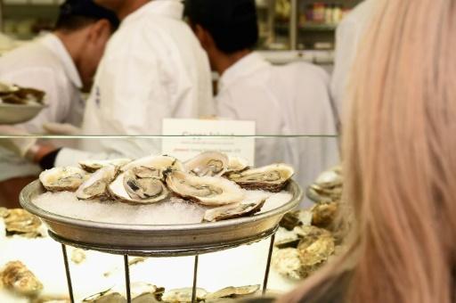 Bassin d'Arcachon: interdiction de consommation de tous les coquillages