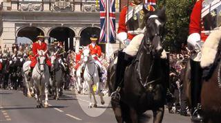 Mariage de Meghan et Harry- un cheval, trop excité, ne parvient pas à se maîtriser (vidéo)