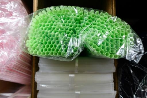 Grèce: premier été sans pailles en plastique pour une île
