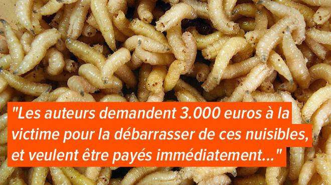 Escroquerie à Dison: ils prétendent qu'elle a des VERS dans sa mansarde, l'amènent à la banque et la dépouillent de 3000€