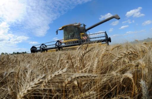Loi alimentation: l'agriculture, pot de terre du débat ?