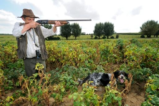 Vers une réforme de la chasse et une baisse du prix du permis