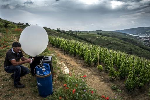 Des ballons chargés de sels contre la grêle, ennemie n°1 des vignes