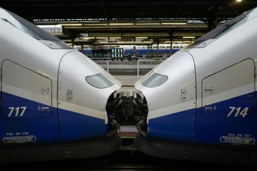 Grève SNCF: 4 TGV et 2 Intercités sur 5, 1 TER sur 2 samedi