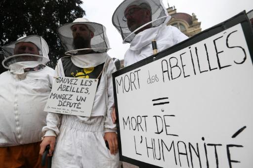 Des apiculteurs lancent un cri d'alarme pour les abeilles devant Hulot