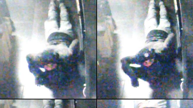 Cet homme perce le mur d'un magasin à Erpent, rampe et vole des cigarettes: le reconnaissez-vous?