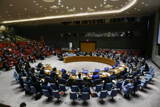 Allemagne, Belgique et Afrique du Sud au Conseil de sécurité en 2019