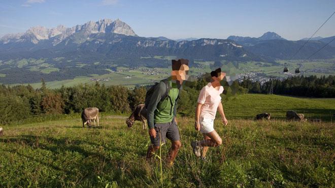 Un randonneur gastronome croit manger une salade sauvage dans les Pyrénées, il s'agit en fait d'une des plantes les plus TOXIQUES en Europe