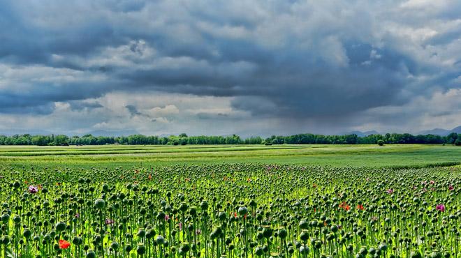 Prévisions météo: nuages puis éclaircies, avant une nuit fraîche