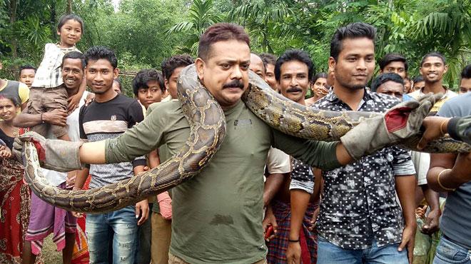 Pour des photos, un Indien pose avec un python autour de son cou: il échappe de justesse à l'étranglement