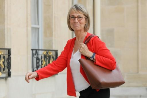 A Arles, Françoise Nyssen fait régulariser des travaux réalisés sans autorisation