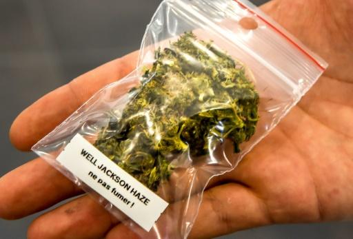 Canada: le cannabis sera légal à partir du 17 octobre