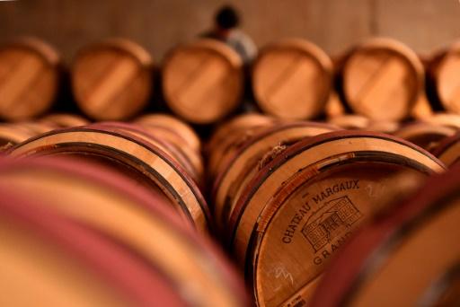 France: face aux aléas climatiques, les vignerons autorisés à accroître leurs stocks