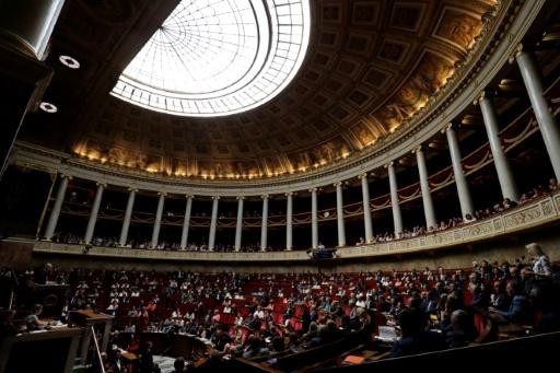 Constitution: les députés suppriment symboliquement le mot