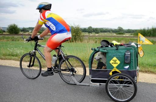 Oublié de l'Etat, le tourisme à vélo connaît un essor tardif en France