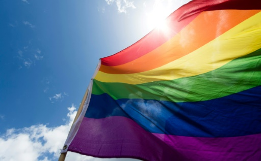 Un drapeau arc-en-ciel sur l'Assemblée nationale déchiré, un individu interpellé