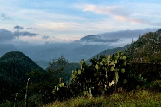 Mexique : la vallée de Tehuacan-Cuicatlan au patrimoine de l'Unesco