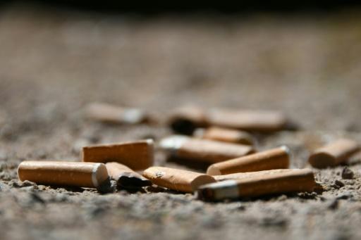 Paris va expérimenter les parcs sans tabac