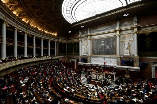 Fausses nouvelles: l'Assemblée vote les propositions de loi, les clivages persistent