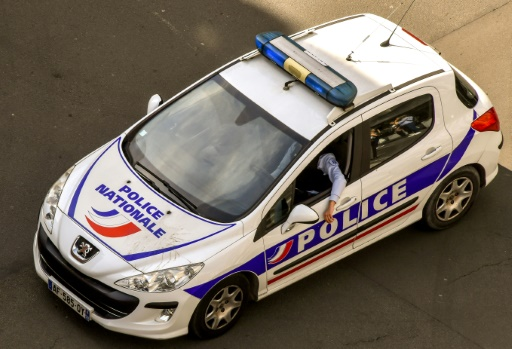 Agression d'un couple de policiers en Seine-et-Marne: un suspect en garde à vue