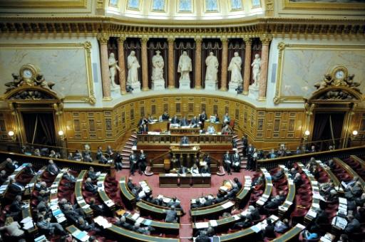 Sport: le Sénat confie aux partenaires sociaux la fixation de la durée du premier contrat pro