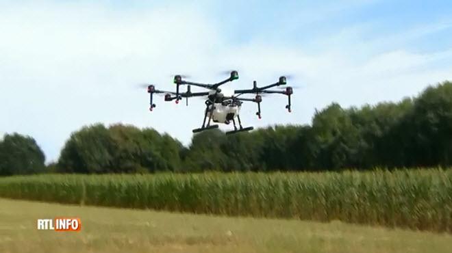 La Flandre a testé un drone capable de pulvériser des pesticides sur les champs
