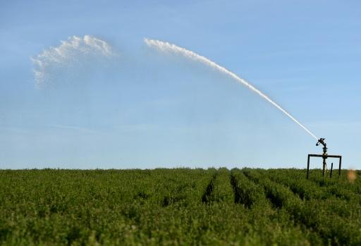 Sécheresse: restriction d'usage de l'eau dans plusieurs départements de l'Ouest