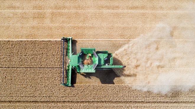 Sécheresse: voici les mesures prises par le gouvernement fédéral pour soutenir les agriculteurs