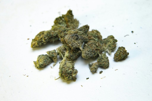La Géorgie légalise l'usage personnel du cannabis