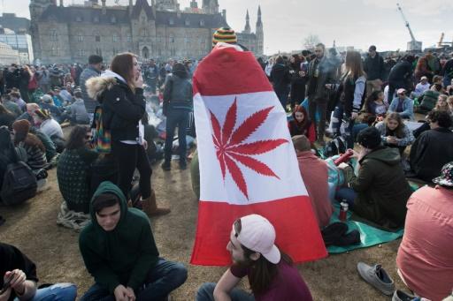 Canada: Molson Coors va lancer des boissons non alcoolisées à base de cannabis