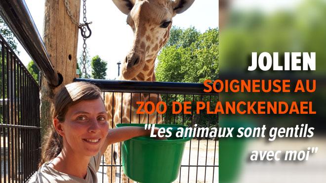 Jolien, soigneuse, nous mène dans les coulisses du zoo de Planckendael: