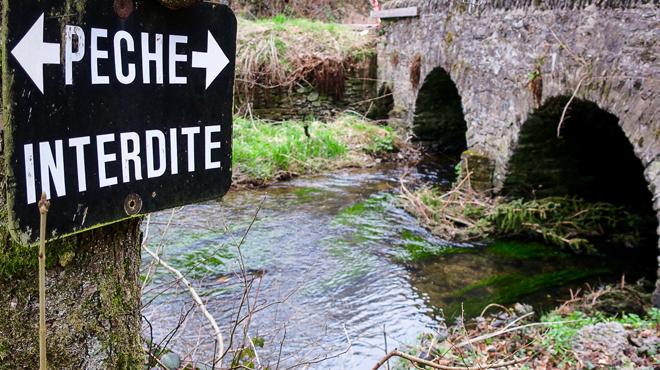 Sécheresse: la pêche est officiellement INTERDITE en eaux vives en Wallonie
