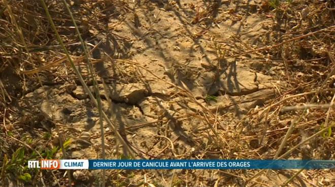 Malgré l'arrivée d'orages et de fraîcheur, la sécheresse va perdurer: voici pourquoi