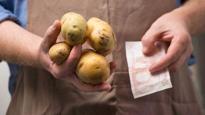 Après la sécheresse, les producteurs belges de pommes de terre s'attendent à de lourdes pertes