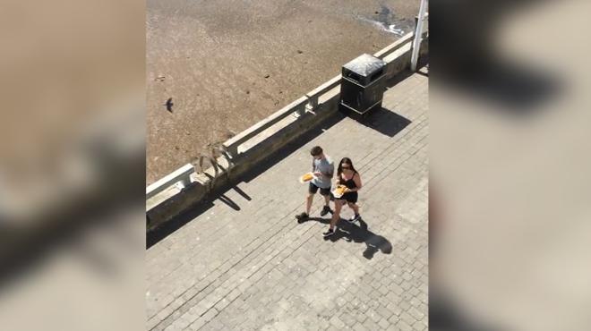 Une bande de voleurs affamés leur tombe dessus alors qu'ils se promènent en bord de mer (vidéo)