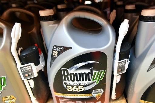 Monsanto reconnu coupable dans le procès Roundup (jury)