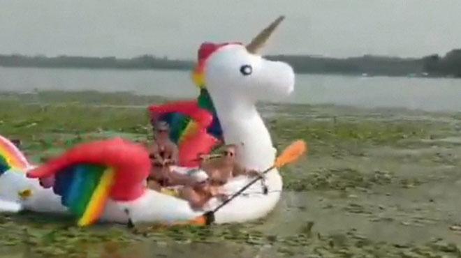 Coincées sur leur bouée licorne sur un lac aux Etats-Unis, elles sont secourues par le shérif