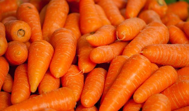 Lynne récolte une carotte TERRIFIANTE dans son potager: