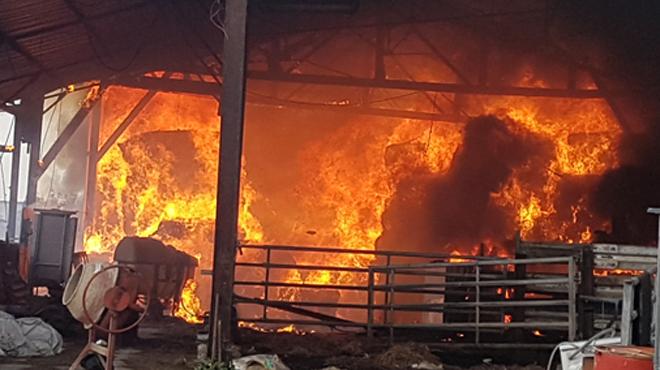Important incendie dans une ferme à Courcelles: plusieurs animaux évacués, une colonne de fumée visible de très loin