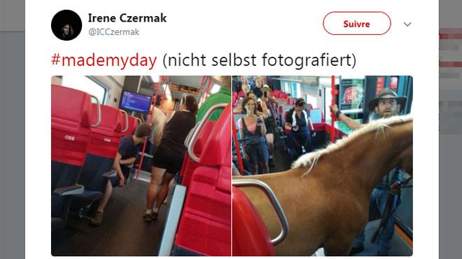 Il monte dans le train avec son cheval en Autriche