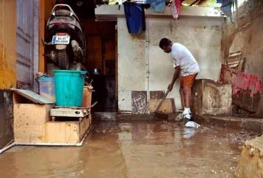 Inondations en Inde : alerte aux serpents avec la baisse des eaux