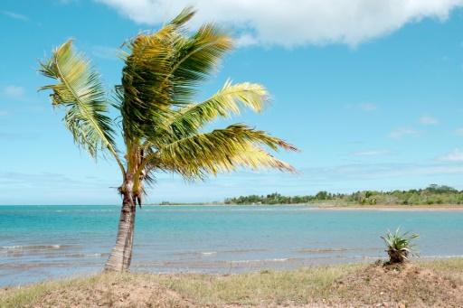 Nouvelle-Calédonie, Vanuatu et Fidji: alerte au tsunami après un séisme