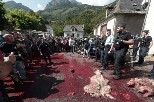 Manifestation anti-ours dans les Pyrénées-Atlantiques, malgré le départ d'Hulot